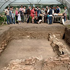 Group of visitors at an excavation site.